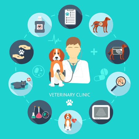 Veterinary flat icon set. Veterinary banner, background, poster, concept. Vet clinic. Flat design. Vector illustration