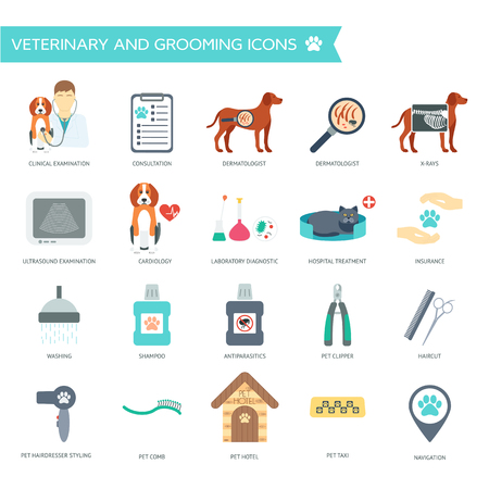 Set of veterinary and grooming icons with names. Flat design. Vector illustration