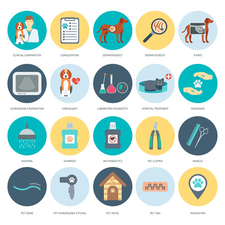 grooming: Set of veterinary and grooming icons with names. Colorful flat design. Vector illustration