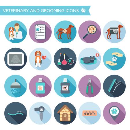 Set di icone veterinari e di pulizia con i nomi. Colorful design piatto con le ombre. Illustrazione vettoriale Archivio Fotografico - 46362167