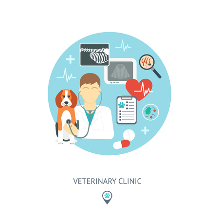 Veterinary flat set. Veterinary banner, background, poster, concept. Vet clinic. Flat design. Vector illustration