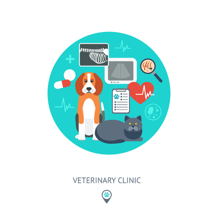 Banner, background, poster, concept with veterinary icons. Veterinary clinic. Flat design. Vector illustration