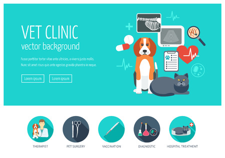 Vet clinic web design concept for website and landing page. Web banner. Flat design. Vector illustration