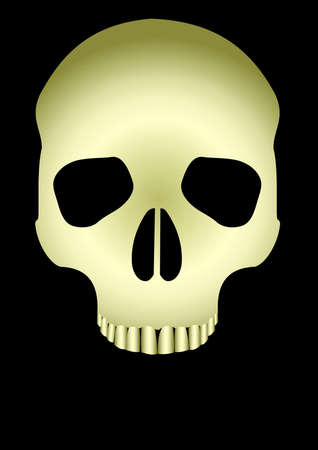 skull on black background. Vector Illustration Vector