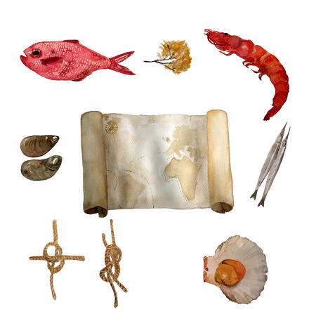 Watercolor vintage nautical set of sea food, rose fish, sea knots, sea shells and old map hand drawn isolated on white. For cards, invitations and afishas.