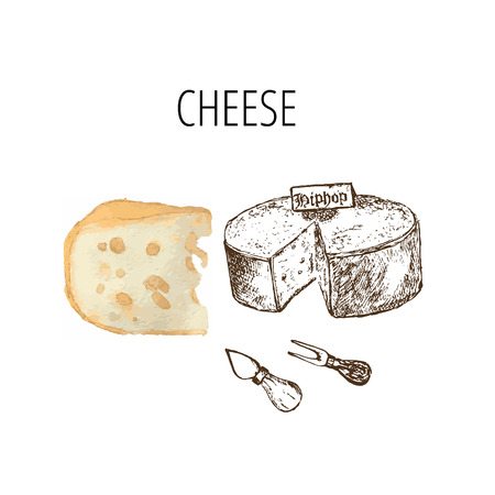 Variety of cheese sorts. Hand drawn illustration of cheese types . Sketch isolated on white and colored vector for menus and shop stickers Ilustração