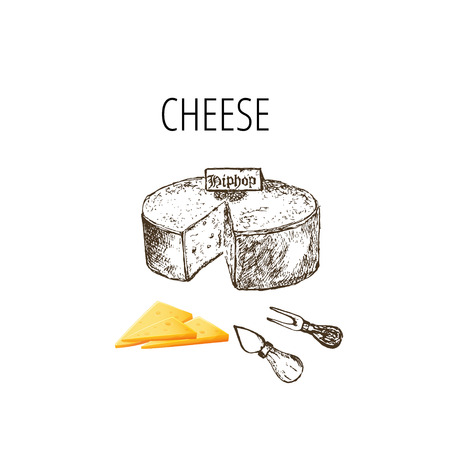 Variety of cheese sorts. Hand drawn illustration of cheese types .