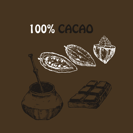 Hand drawn sketch cocoa chocolate product set. Vintage vector illustration of natural healthy food for menus, label and infographics