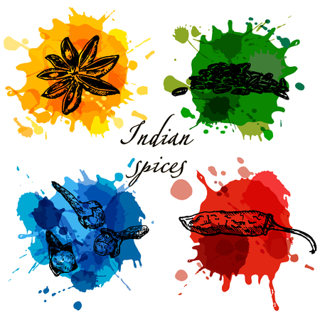Set of indian spices on bright watercolor stylized splashes, hand drawn sketch illustration. Anice star, cloves, chili pepper and cardamone.