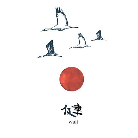 Red crowned Japanese crane on the background of the red sun and hieroglyph. Red-crowned crane. Grus japonensis. Vector illustration in Japan. Ilustração