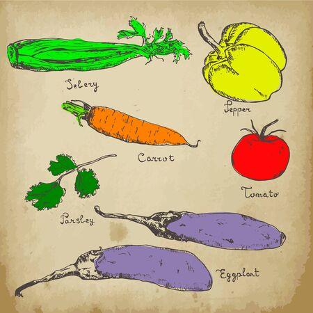 Vegetables colored hand drawn ink sketch on vintage background. Set of various organic vegetables. Sketches of different vitamin food. Isolated on white eco vegetables. Ilustração