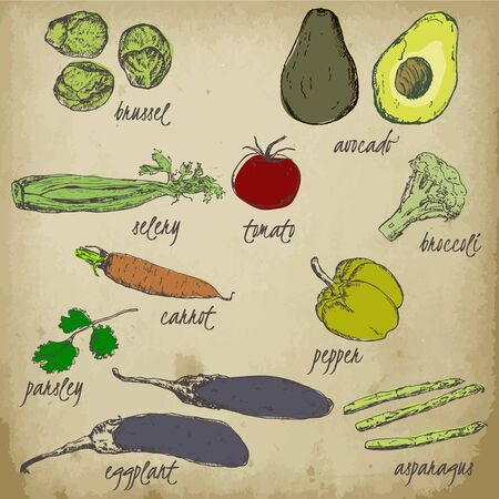 Vegetables vitamin and ecological vector background. Hand drawn sketch vegetables. Can be used for vegan products, eco restaurant menu, farmers market and organic food store.