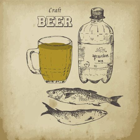 Beer sketch vector illustration. Drawing hand drawn items, beer bottle, mug and sardines. Retro vintage items for craft brewery graphics.