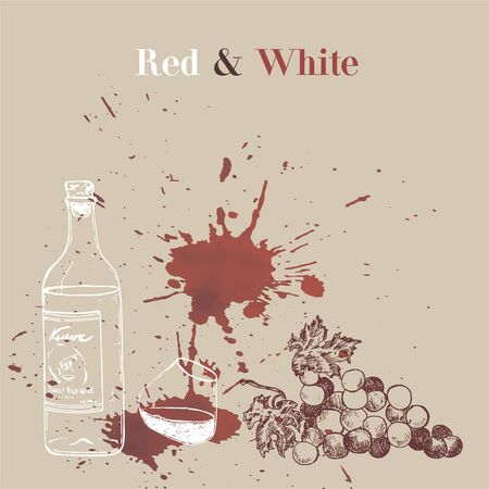 Wine events presentation sketch vector illustration of red winery spot with liquid effect. Stains of red wine, bottle and grapes for red and white wine degustation.