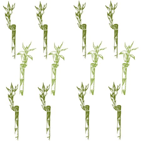 Green bamboo leaves, branches and stems sketch vector pattern. Go green and use eco bamboo. Ecological hand drawn illustration of chineese bamboo.
