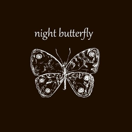 Night butterfly black outline vector illustration. Hand drawing and original sketch. Night butterfly drawing silhouette graphic. Beautiful night moth arranged.