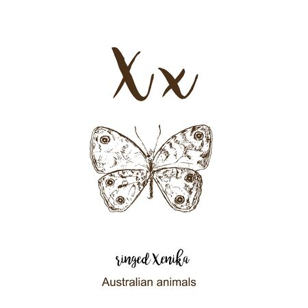 Ringed xenika butterfly, A to z, alphabet sketch australian animals drawing vector illustration. Vintage hand drawn with lettering. Letter X for Ringed xenika butterfly. ABC. Ilustração