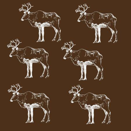 Reindeer engraving style, vintage vector illustration, hand drawn sketch pattern. Winter deer retro ink pen for christmas cards.
