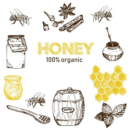 Honey and bee hand drawn sketch elements and text vector illustration. Honecomb, organic food, barrel of honey from natural bee apiary and spices isolated on white.