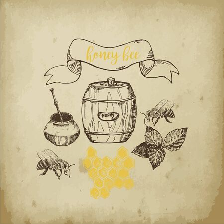 Honey and bee hand drawn sketch poster and text vector illustration. Honecomb, organic food, barrel of honey from natural bee apiary isolated on old paper background. Ilustração
