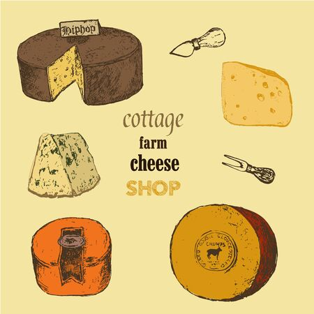 Cheese collection sketch colored vector illustration. Hand drawn sorts of cottage organic production cheeses. Eco goat milk shop or market.