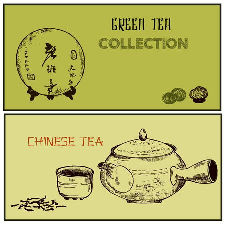 Green tea and health care herbs banners set sketch vector illustration. Tea leaves, chinese teapot, herbs and puer tea. Design for packaging, drink menu, homeopathy and alternative medicine.