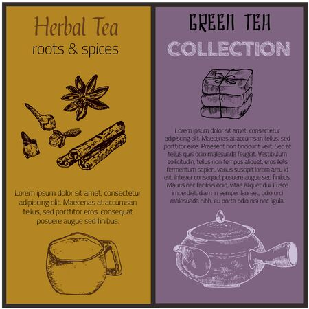 Green tea and spices banners set sketch vector illustration. Tea leaves, chinese teapot, herbs and spices. Design for packaging, drink menu, homeopathy and alternative medicine. 向量圖像