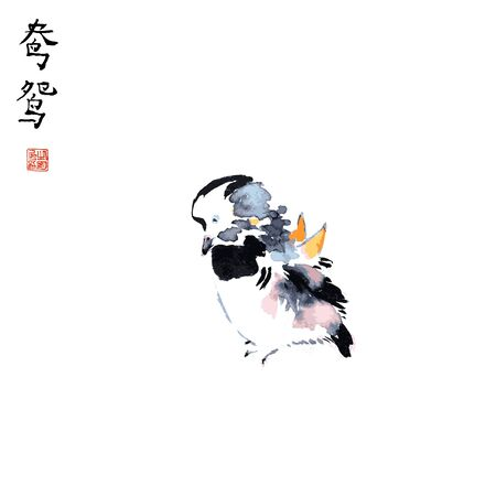Mandarin duck male traditional chinese ink sketch painting isolated vector illustration.