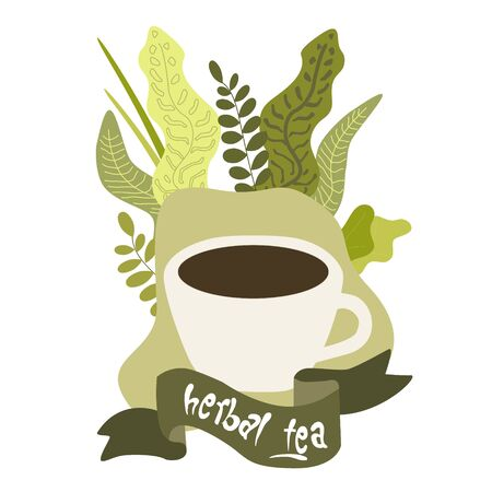 Herbal green tea, cup of natural drink with organic herbs and greenery isolated vector illustration. Health and natural medicine, plants for healthy beverages and relax. Vectores