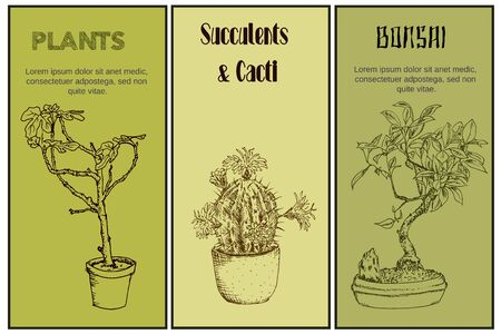 Green plants in pot sketch ink pen hand drawn banners set, vector illustration of bonsai tree, fig flower and cactus for florists store online.