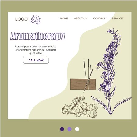 Aromatheraphy, natural organic aroma herbs oils website template, vector illustration. Herbs and roots for essential oils, aromatic plants and flowers. Ilustração Vetorial
