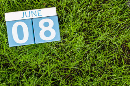 greengrass: June 8th. Image of june 8 wooden color calendar on greengrass lawn background. Summer day, empty space for text.