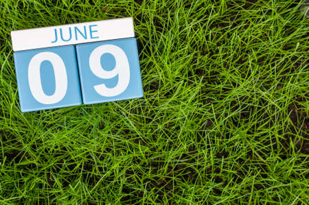 greengrass: June 9th. Image of june 9 wooden color calendar on greengrass lawn background. Summer day, empty space for text. Stock Photo