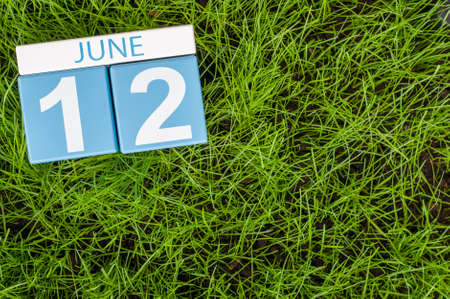 greengrass: June 12th. Image of june 12 wooden color calendar on greengrass lawn background. Summer day, empty space for text. Stock Photo