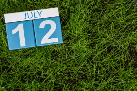 greengrass: July 12th. Image of july 12 wooden color calendar on greengrass lawn background. Summer day, empty space for text.