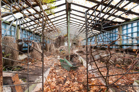hothouse: Old abandoned glasshouse or hothouse at Pripyat - ghost city at Chernobyl exclusion zone, Ukraine. Stock Photo