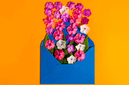 undefined: Envelope Mail, Blue cover with many little flowers on orange Background. Valentine Day Card, Love or Wedding Greeting Concept, Empty space.