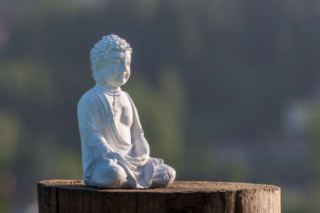 Zen, yoga and meditation concept. White Buddha on green relax background