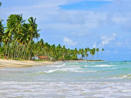 Aerial view of Carneiros Beach, Tamandar?, Pernambuco, Brazil. Great beach scene. Beautiful landscape. Vacation travel. Great beach scene. Beautiful landscape. Great beach view. Travel destination. Vacation destination. Paradise.