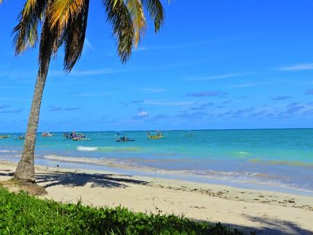 Travel vacation tropical destination. Palm tree beach landscape. Travel vacations destination. Travel concept. Perfect vacation landscape. Lonely palm on the beach. Travel lifestyle vacation destination. Palm tree. Vacations. Standard-Bild - 117103629