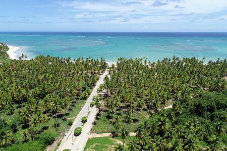 Sao Miguel dos Milagres, Alagoas, Brazil. Fantastic landscape. Great beach scene. Paradise beach with crystal water. Brazillian Caribbean.