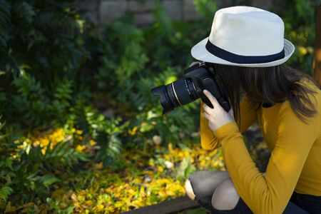 Woman photographer dressed in yellow photographing yellow tree leaves in the forest. Concept of Nature Photography. Stock Photo