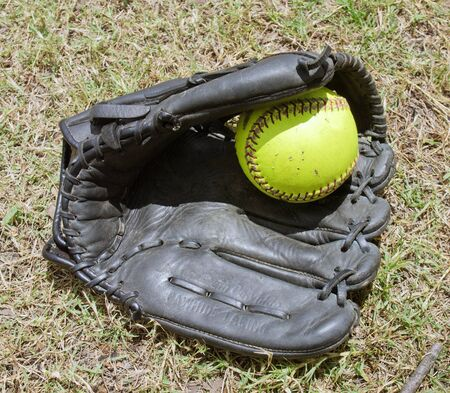 Green ball in softball grove Stock Photo - 15005755
