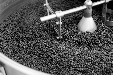 coffee beans in roast machine, monotone color Stock Photo - 19983715