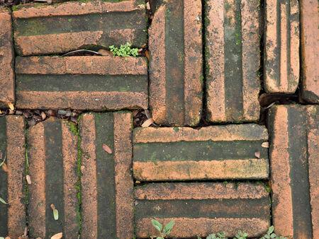 dirty bricks on floor texture background