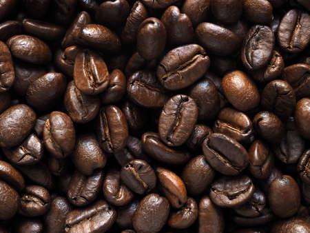 coffee crop: Coffee crop beans Stock Photo