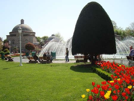 ottoman: The Ottoman Tulips Background Stock Photo