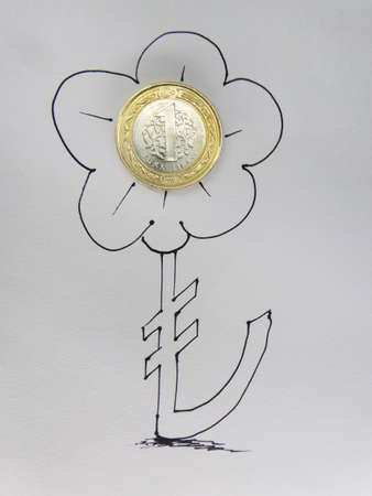 turkish lira: Flower Symbol and Turkish Lira