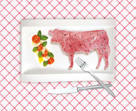 This is illustration diagram of beef cutting illustration