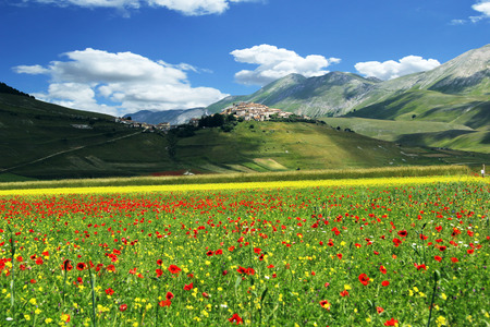 Blossoming time in a wonderful Italian valley